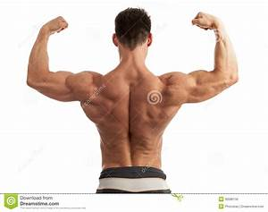 Young Man Flexing His Arm And Back Muscles Stock Photo ...