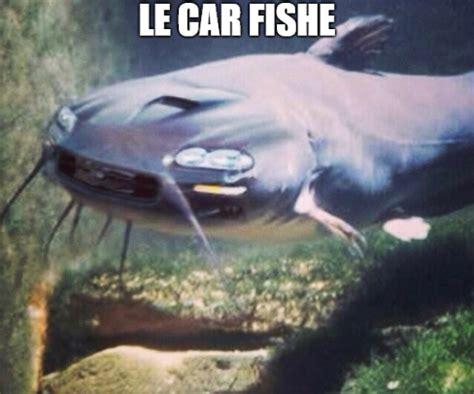 Car fish Car fish Car fish Car fish Car fish Car fish Car ...