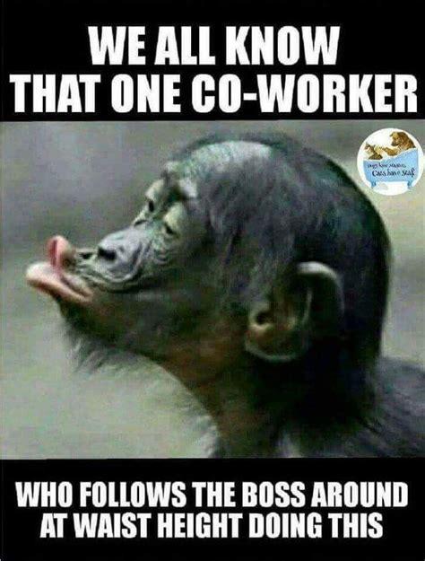 work memes ideas  pinterest