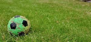 Rasenpflege Im Sommer : rasenpflege im sommer das ist wichtig willkommen in franks kleinem garten ~ Frokenaadalensverden.com Haus und Dekorationen