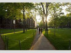 8 Ways to Enjoy a Harvard Summer Harvard Summer School