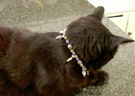beaded necklace  cats hgtv