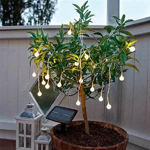 Led Lichterkette Solar : led solar lichterkette preisvergleich die besten angebote online kaufen ~ Eleganceandgraceweddings.com Haus und Dekorationen