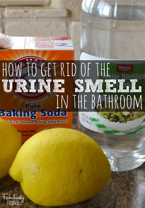 rid   bathroom urine smell