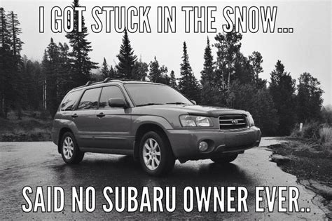 Subaru Memes - 20 best images about subaru ideas on pinterest cars keep calm and subaru