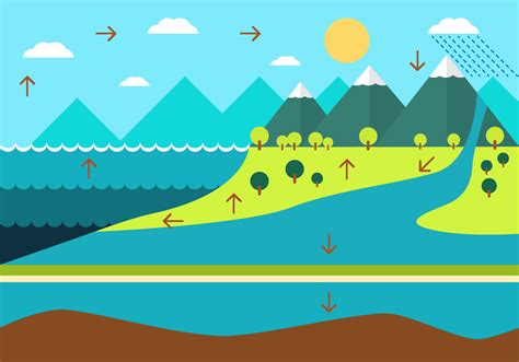 free water cycle diagram free vector stock
