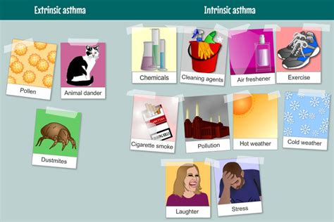forms of asthma types of asthma my lungs my life