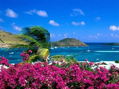 Romantic Different Awesome Views Beaches Tropical Flowers