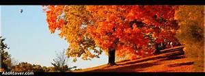 Fall - Autumn Facebook Covers, Fall - Autumn FB Covers ...