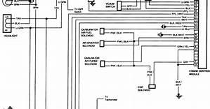 94 Gmc Truck Wiring Diagrams 44653 Ciboperlamenteblog It