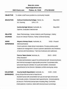 Chronological resume template 28 images chronological for Chronological resume