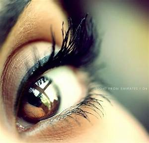 brown eye close up image search results