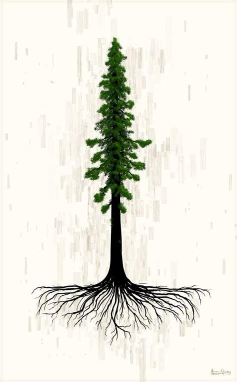 image result  large poster  northwest evergreen trees