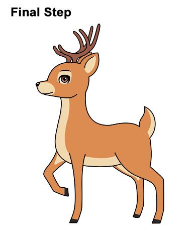 draw  deer cartoon video step  step pictures