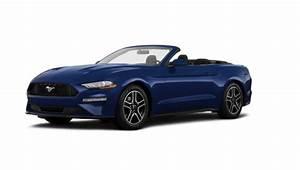 2021 Mustang Cobra Price - Release Date, Redesign, Specs, Price