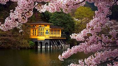 Spring 1080 1920 Desktop Wallpapers Nature Awesome