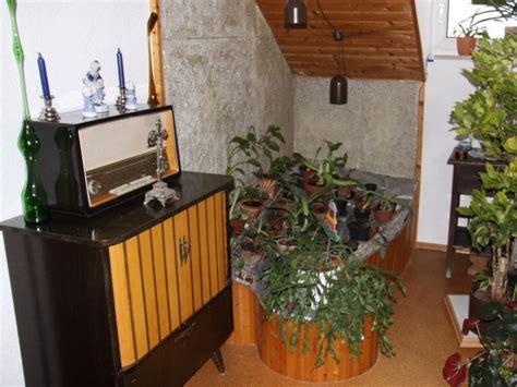 Pflanzen Für Dunkle Ecken pflanzen für dunkle ecken pflanzen f r dunkle ecken zuhause wohnen