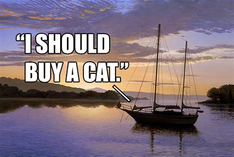 Buy A Boat by Image 678328 I Should Buy A Boat Cat Your Meme