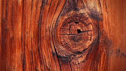 Wood Backgrounds Wallpapers Background Advertisement