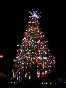 Christmas, Tree, Lighting, U2013, Ramona, Chamber, Of, Commerce