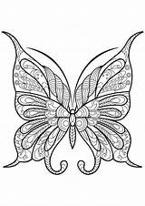 Butterfly Coloring Butterflies Pages Patterns Simple Printable Adult Adults Coloriage sketch template