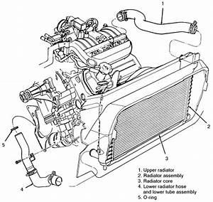 2003 Ford Truck F150 1  2 Ton P  U 4wd 4 6l Mfi Sohc 8cyl