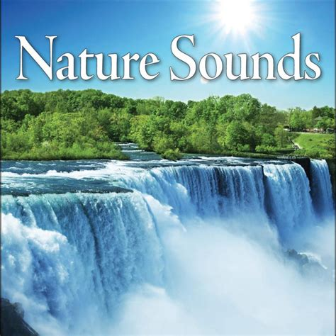 Nature Sounds Relaxation: Music for Sleep, Meditation
