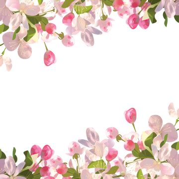 Realistic Spring Flowers Background Spring Flowers PNG