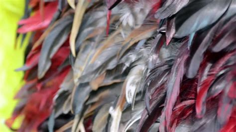 feather fabric exclusive feather fabric   yard