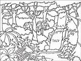 Coloring Forest Printable Adults Popular sketch template
