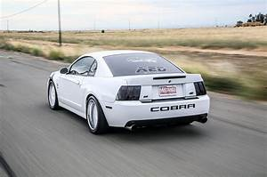 [32+] 2003 Ford Mustang Cobra Terminator Wallpapers on WallpaperSafari