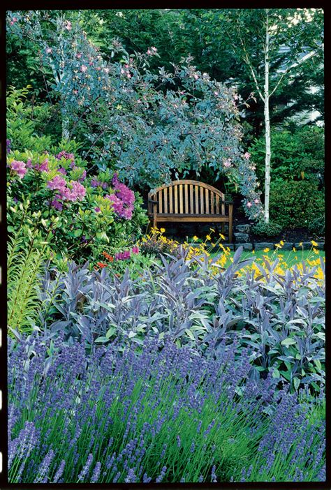 Cottage Guide by Use Our Planting And Design Tips To Create Your Own