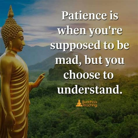 Do not dwell in the past, do not dream of the future, concentrate the mind on the present moment. Patience is an understand   Buddha quote, Buddha quotes peace