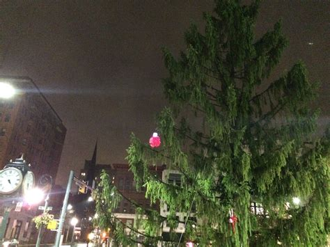 City Of Reading Embraces Ugly Christmas Tree