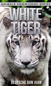 White Tiger: Beautiful Pictures & Interesting Facts ...