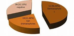Number And Percentage Of Dermatophytes  Nondermatophytes