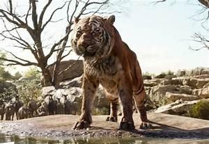 Book A Tiger Com : neko random the jungle book 2016 film review ~ Yasmunasinghe.com Haus und Dekorationen