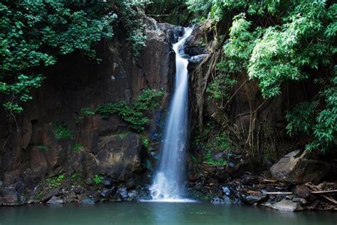 kauai botanical gardens national tropical botanical garden kauai hawaii