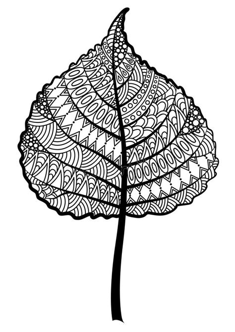 zentangle black  white tree leaf   white background