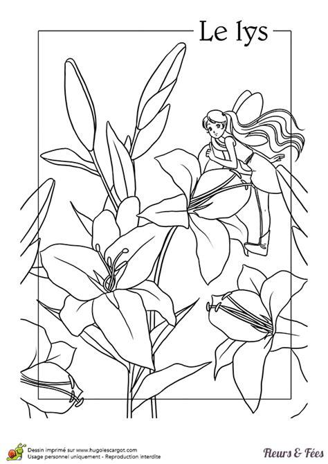 coloriage les fleurs lys