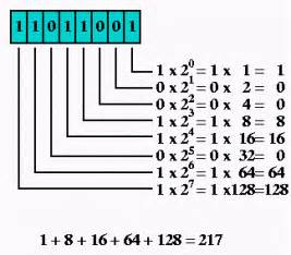 How to Convert Decimal into Binary Numbers