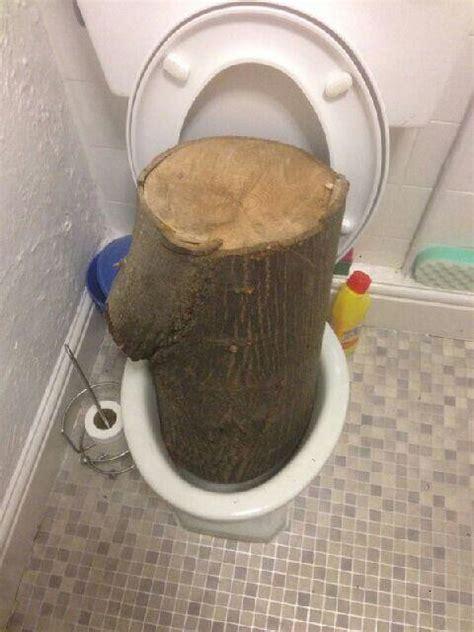 big flush  sunday brubaker