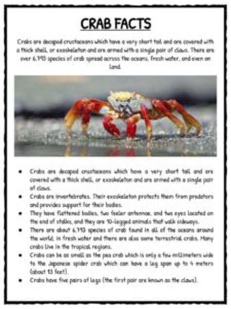 crab facts and worksheets for 594 | Crabs Worksheet 6 225x300