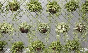 7 ideas encantadoras para decorar un patio pequeno patios for Que plantas poner en un jardin pequeno