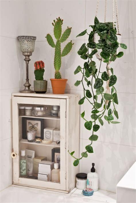 ideas  bathroom plants  pinterest house