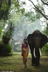 Taro Elephant Park Bali