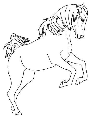 dibujo de caballo arabe encabritado  colorear