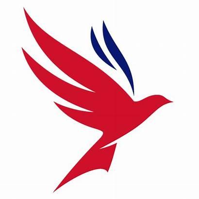 Freedom Deliver Appoints Dover Port Services Vision
