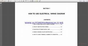 Auto Repair Manuals  Musso Ewd Cewd Electrical Wiring