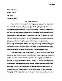 Essay On Cultural Identity Essay About Death Penalty Essay Topics On  Reflective Essay On Cultural Identity Essays On Importance Of English also Paper Essay Writing  Thesis In Essay